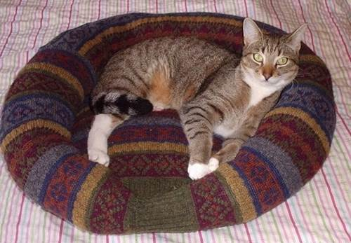 DIY Comfy Pet Bed from Old Sweater 10_1